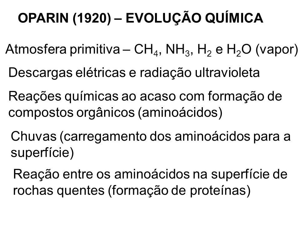 OPARIN (1920) – EVOLUÇÃO QUÍMICA