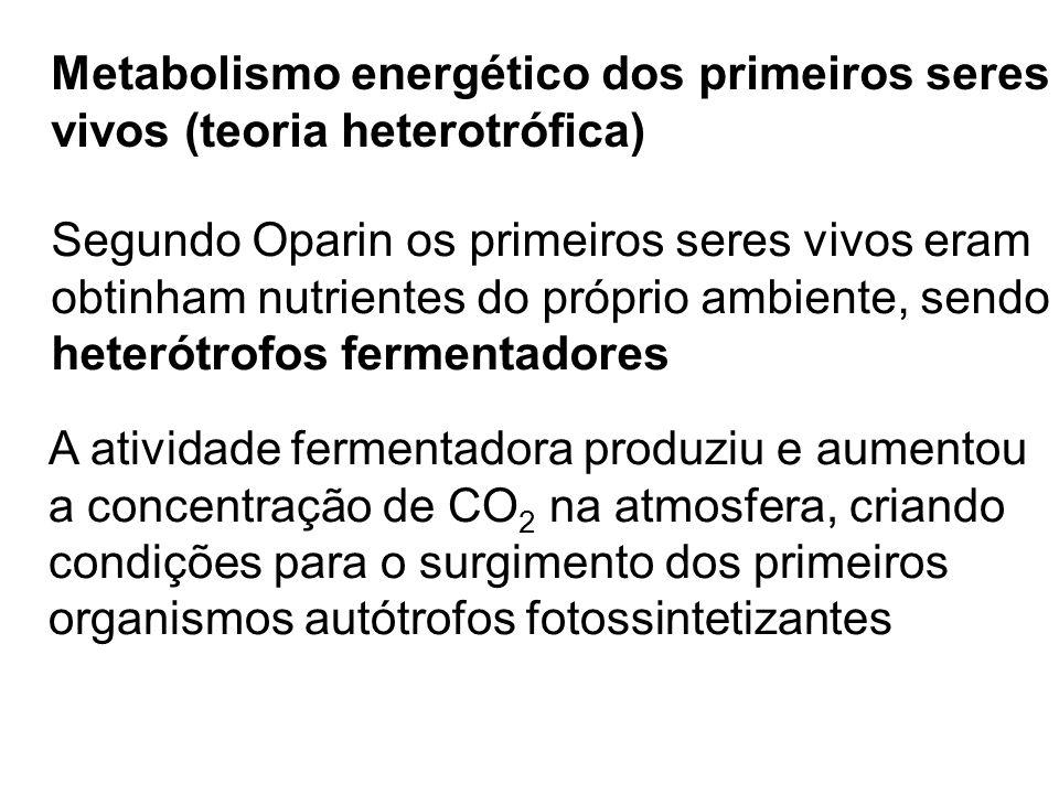 Metabolismo energético dos primeiros seres