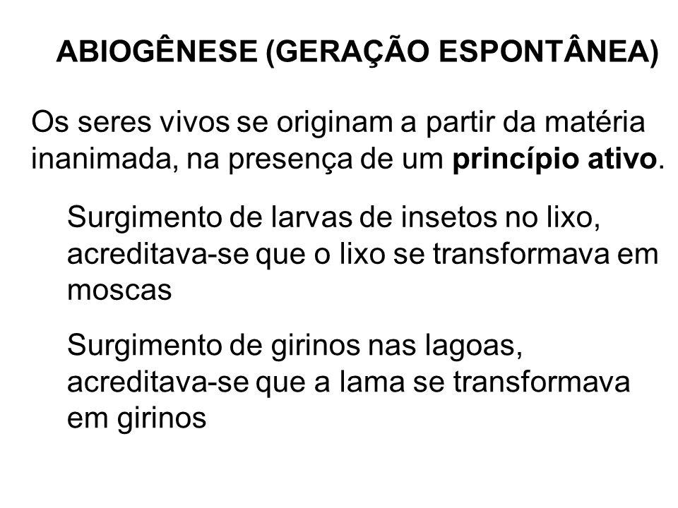 ABIOGÊNESE (GERAÇÃO ESPONTÂNEA)