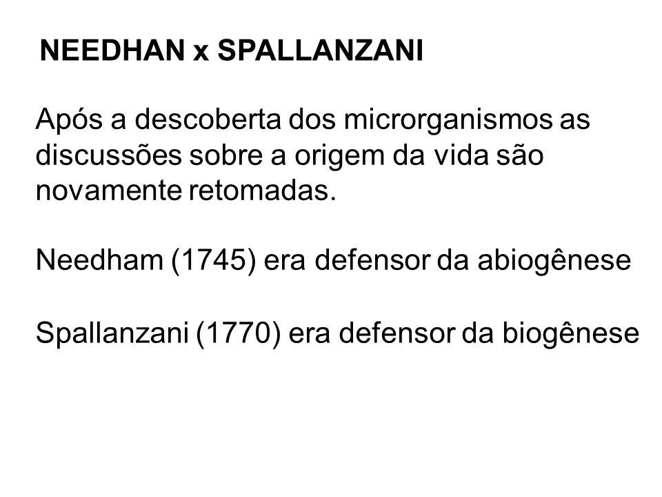 NEEDHAN x SPALLANZANI Após a descoberta dos microrganismos as. discussões sobre a origem da vida são.