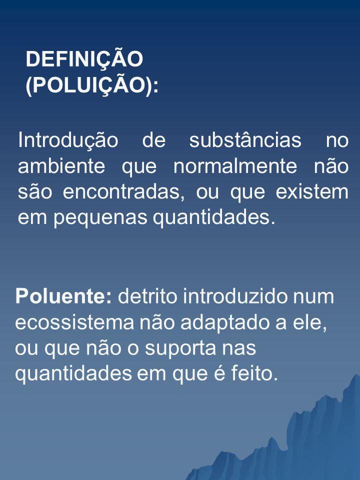 DEFINIÇÃO (POLUIÇÃO):