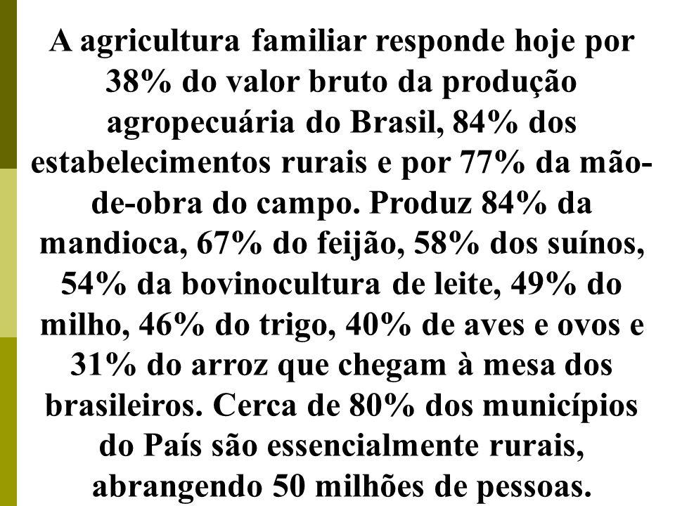 A agricultura familiar responde hoje por 38% do valor bruto da produção agropecuária do Brasil, 84% dos estabelecimentos rurais e por 77% da mão-de-obra do campo. Produz 84% da mandioca, 67% do feijão, 58% dos suínos, 54% da bovinocultura de leite, 49% do milho, 46% do trigo, 40% de aves e ovos e 31% do arroz que chegam à mesa dos brasileiros. Cerca de 80% dos municípios do País são essencialmente rurais, abrangendo 50 milhões de pessoas.