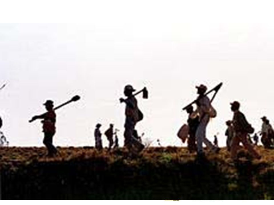 Reforma agrária