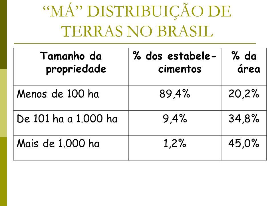 MÁ DISTRIBUIÇÃO DE TERRAS NO BRASIL