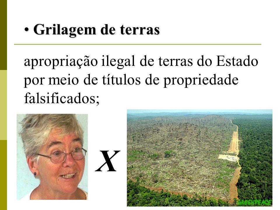 Grilagem de terras apropriação ilegal de terras do Estado por meio de títulos de propriedade falsificados;