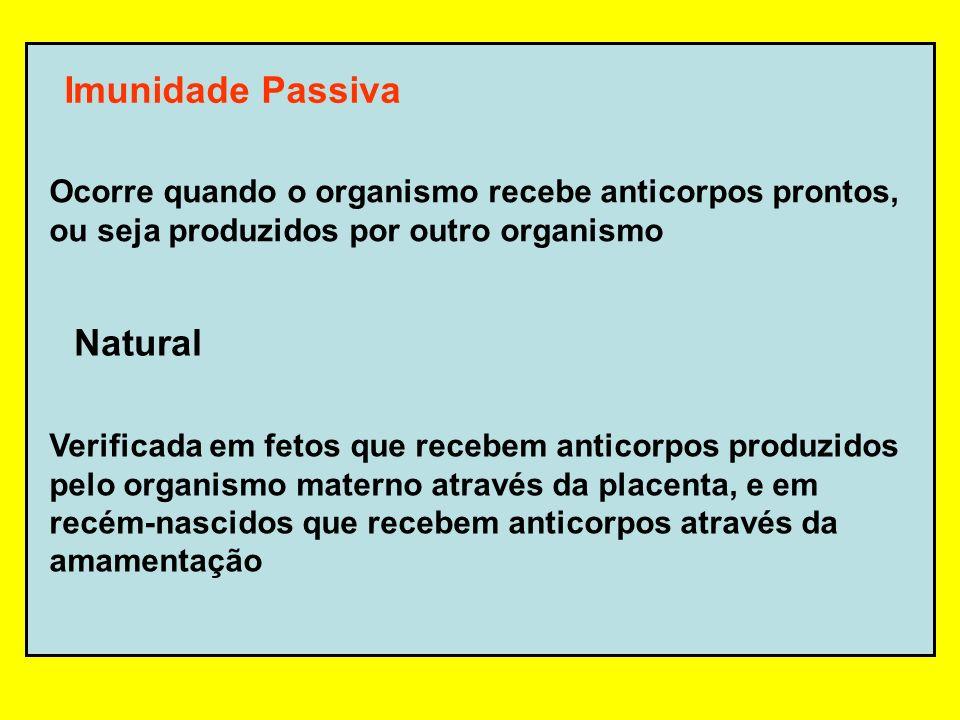 Imunidade Passiva Natural