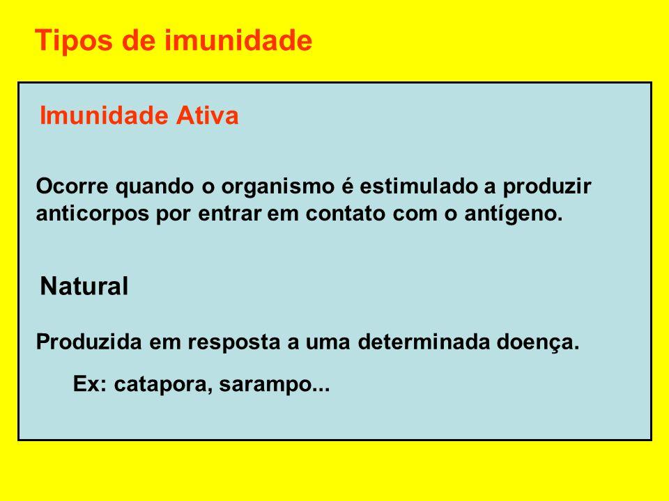Tipos de imunidade Imunidade Ativa Natural