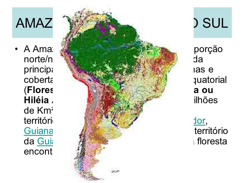 AMAZÔNIA NA AMÉRICA DO SUL
