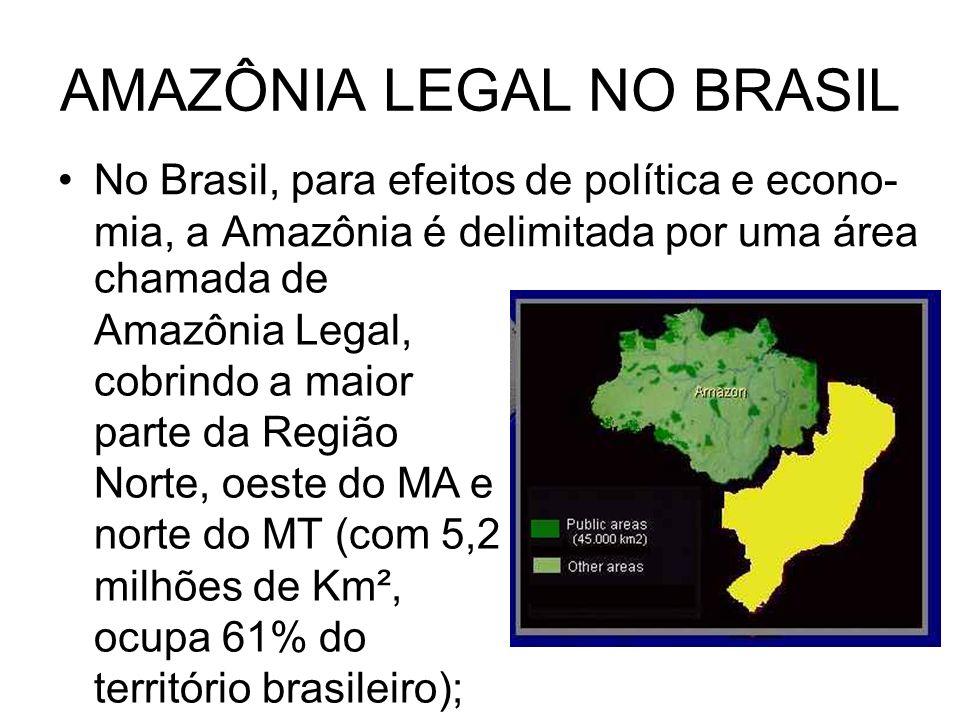 AMAZÔNIA LEGAL NO BRASIL