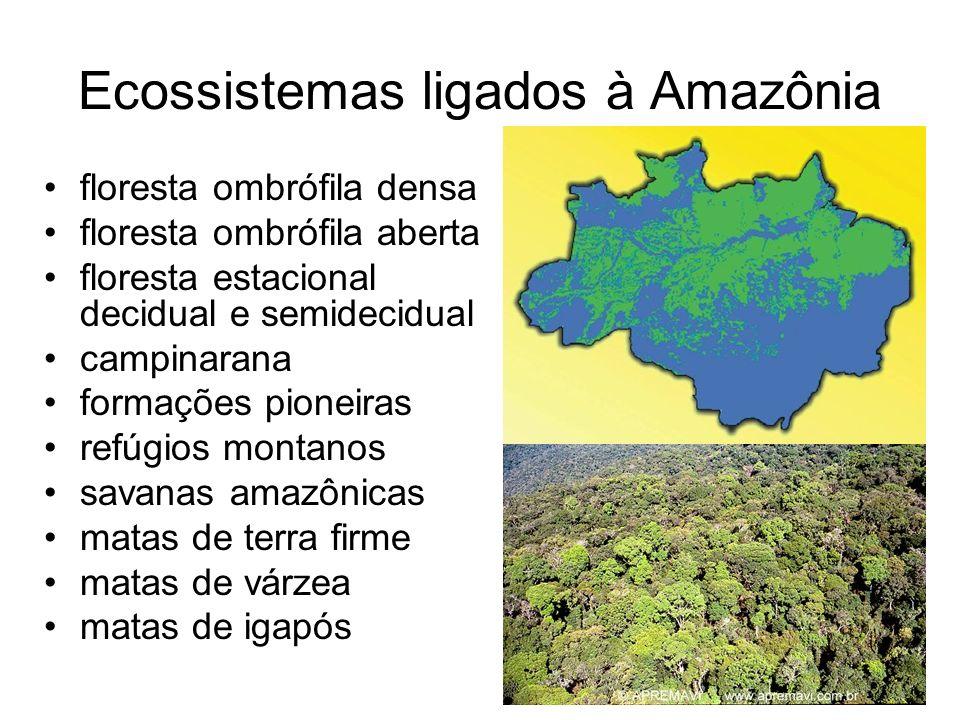 Ecossistemas ligados à Amazônia