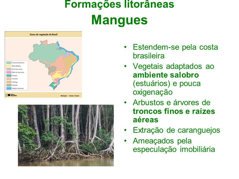 Formações litorâneas Mangues