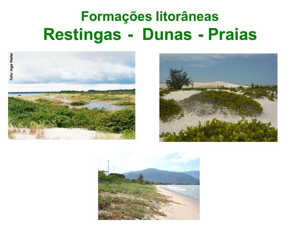 Formações litorâneas Restingas - Dunas - Praias