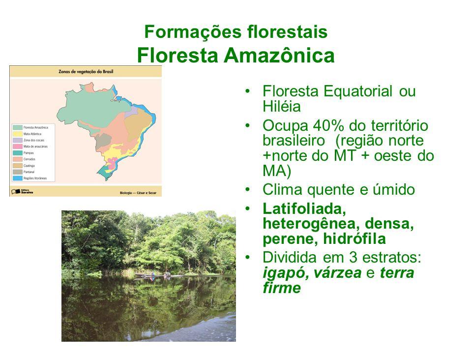Formações florestais Floresta Amazônica