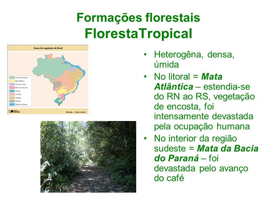 Formações florestais FlorestaTropical