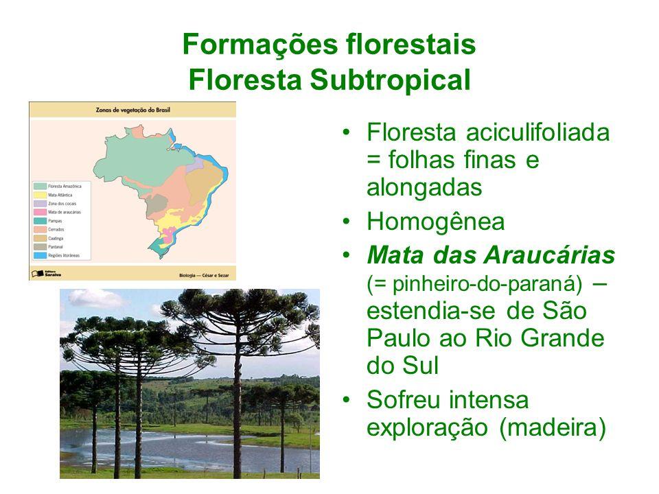 Formações florestais Floresta Subtropical