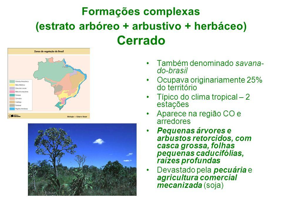 Formações complexas (estrato arbóreo + arbustivo + herbáceo) Cerrado