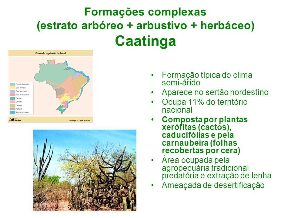Formações complexas (estrato arbóreo + arbustivo + herbáceo) Caatinga