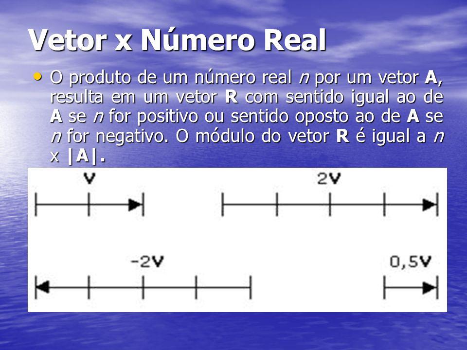 Vetor x Número Real