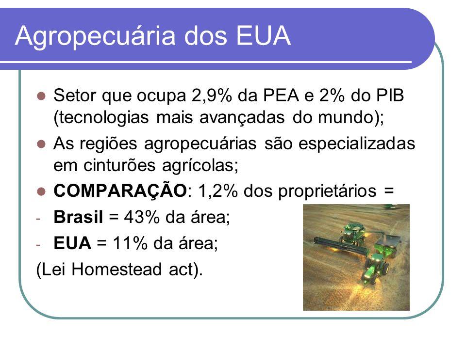 Agropecuária dos EUA Setor que ocupa 2,9% da PEA e 2% do PIB (tecnologias mais avançadas do mundo);