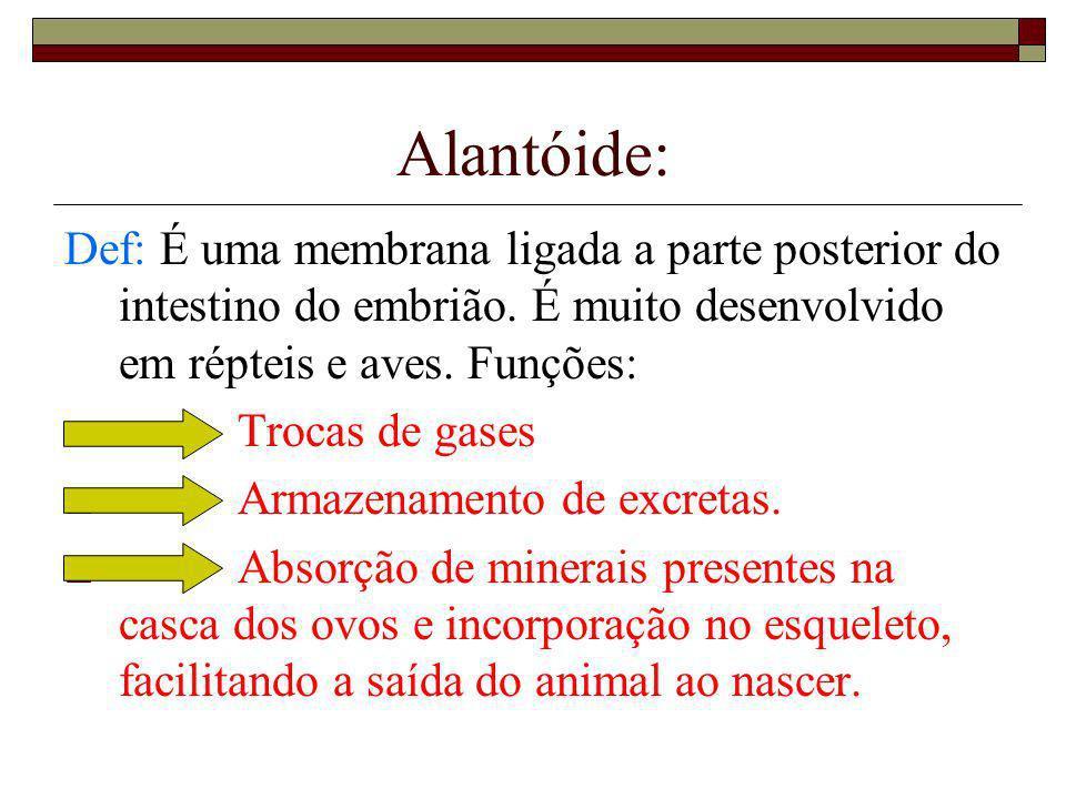 Alantóide:Def: É uma membrana ligada a parte posterior do intestino do embrião. É muito desenvolvido em répteis e aves. Funções: