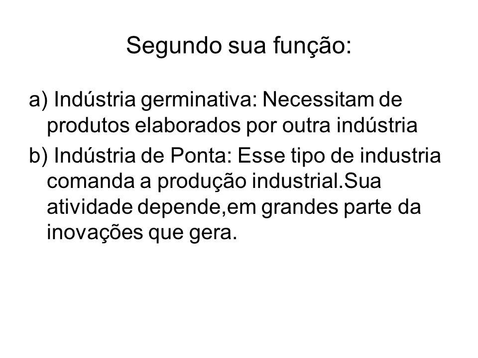 Segundo sua função: a) Indústria germinativa: Necessitam de produtos elaborados por outra indústria.