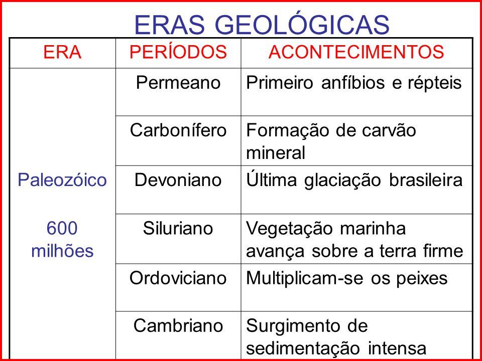 ERAS GEOLÓGICAS ERA PERÍODOS ACONTECIMENTOS Permeano