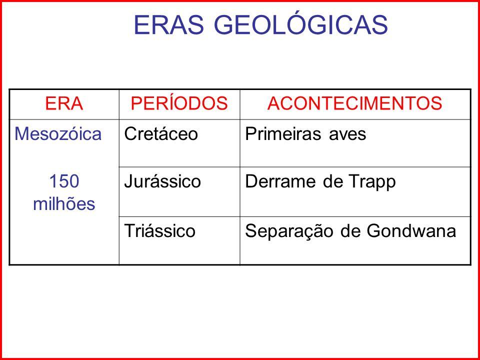 ERAS GEOLÓGICAS ERA PERÍODOS ACONTECIMENTOS Mesozóica Cretáceo