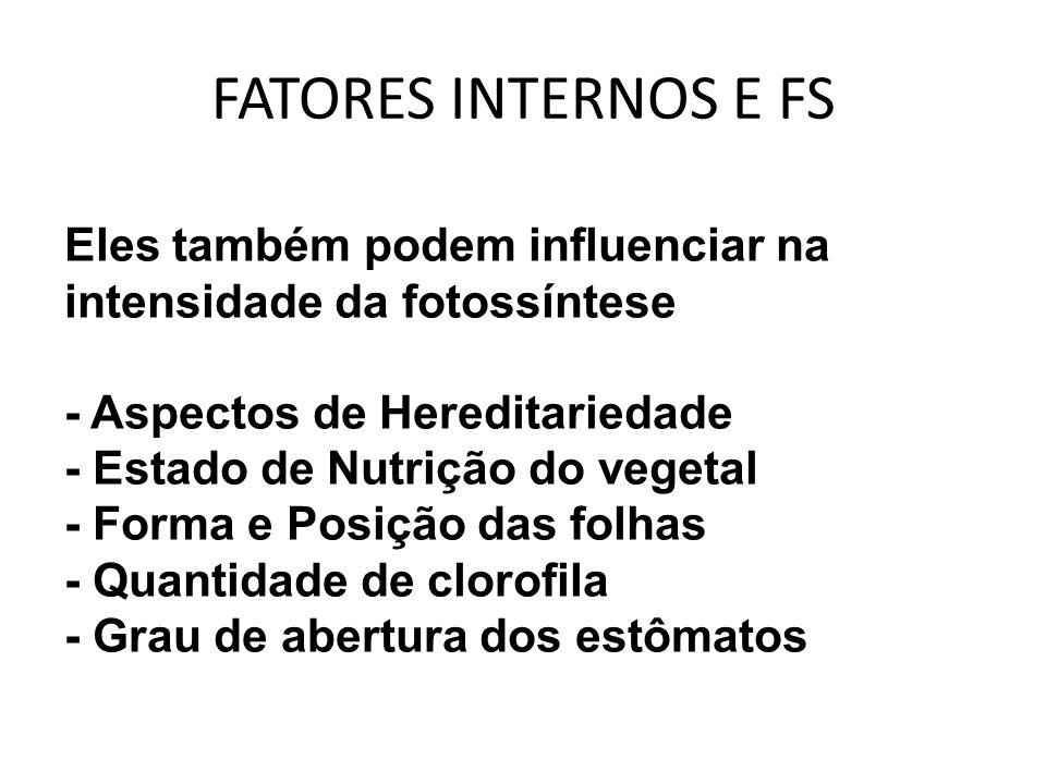FATORES INTERNOS E FS Eles também podem influenciar na intensidade da fotossíntese. - Aspectos de Hereditariedade.