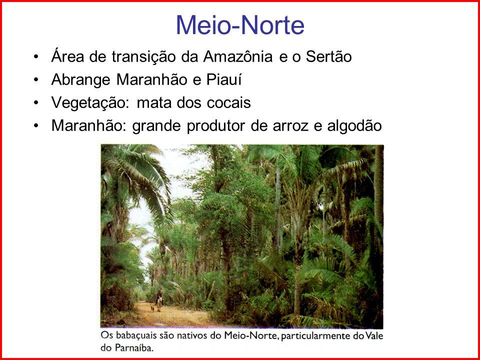 Meio-Norte Área de transição da Amazônia e o Sertão