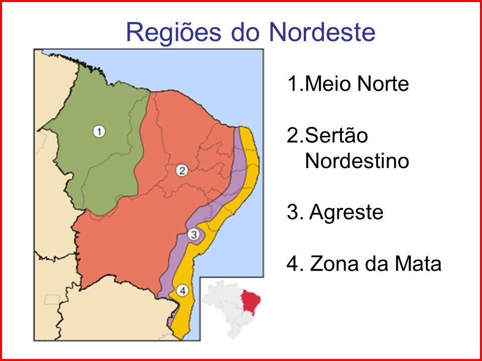 Regiões do Nordeste Meio Norte 2.Sertão Nordestino 3. Agreste