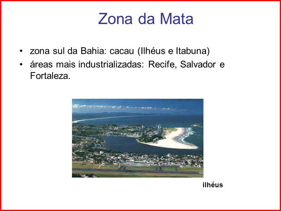 Zona da Mata zona sul da Bahia: cacau (Ilhéus e Itabuna)