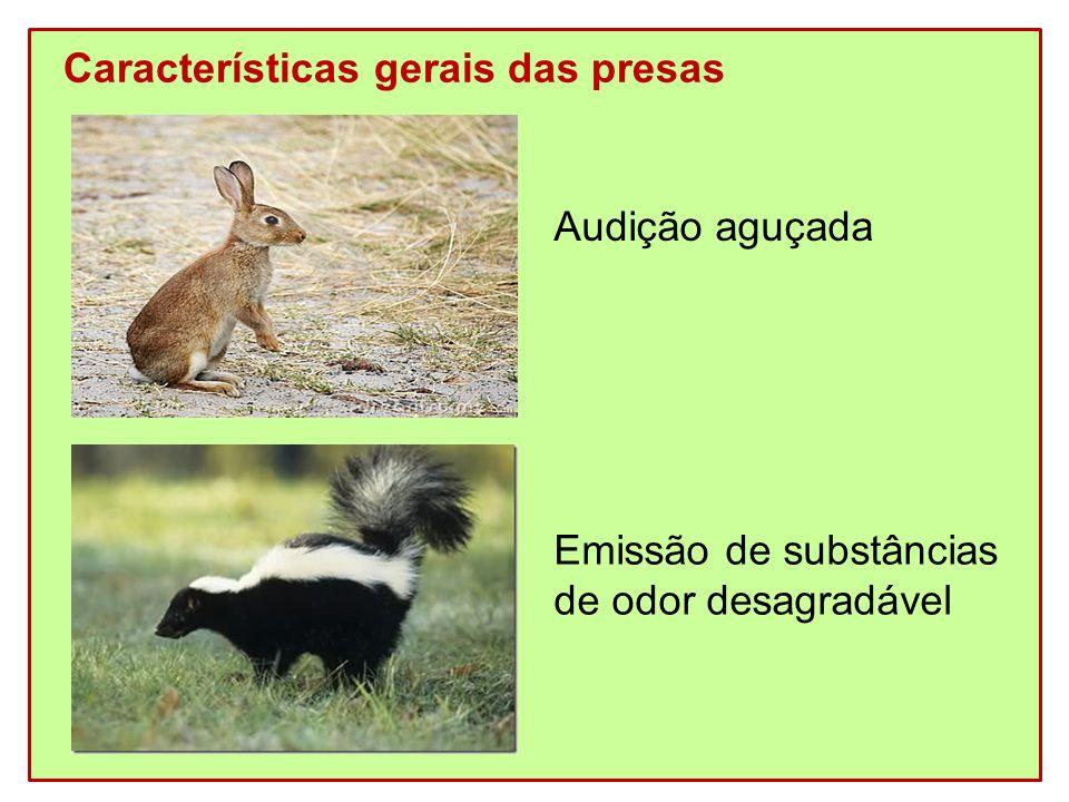 Características gerais das presas