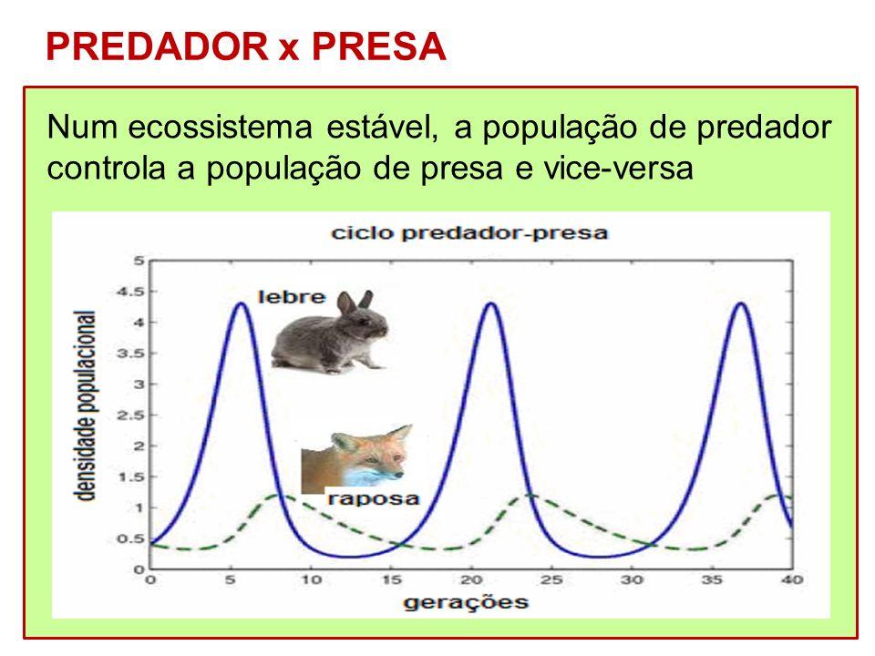 PREDADOR x PRESA Num ecossistema estável, a população de predador