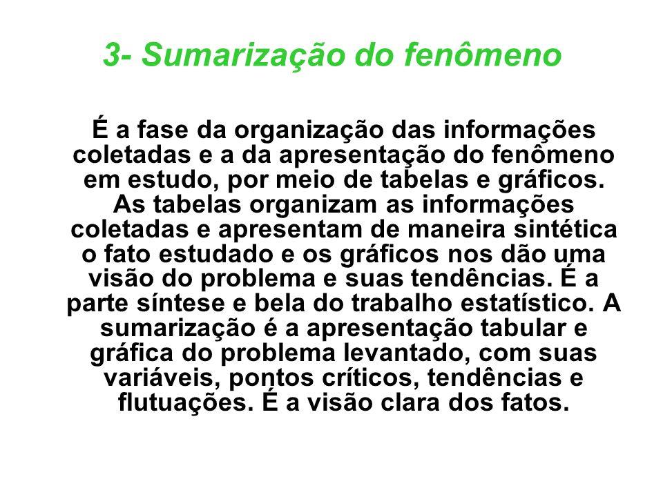 3- Sumarização do fenômeno