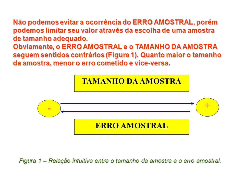 - + TAMANHO DA AMOSTRA ERRO AMOSTRAL