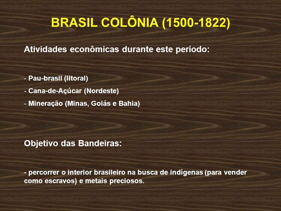 BRASIL COLÔNIA (1500-1822) Atividades econômicas durante este período: