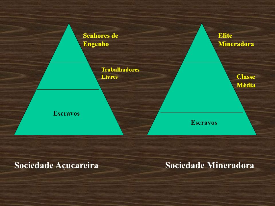 Sociedade Açucareira Sociedade Mineradora