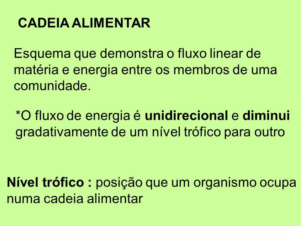 CADEIA ALIMENTAREsquema que demonstra o fluxo linear de. matéria e energia entre os membros de uma.