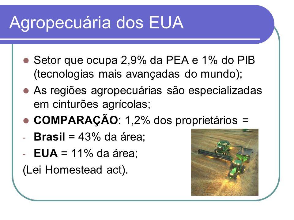 Agropecuária dos EUA Setor que ocupa 2,9% da PEA e 1% do PIB (tecnologias mais avançadas do mundo);
