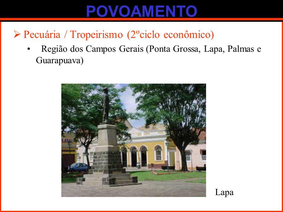 POVOAMENTO Pecuária / Tropeirismo (2ºciclo econômico)