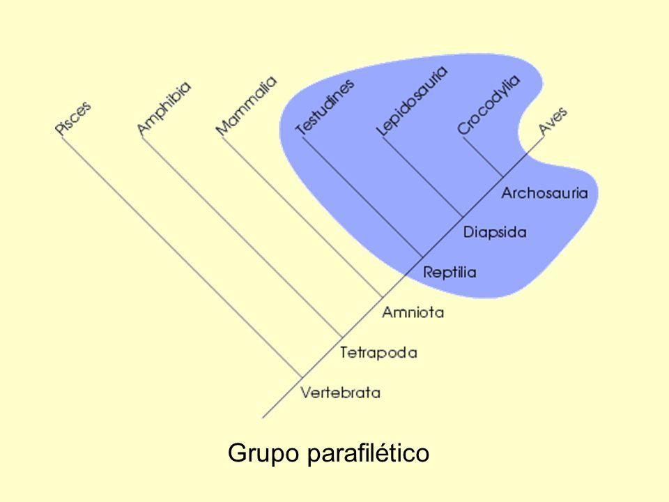 Grupo parafilético
