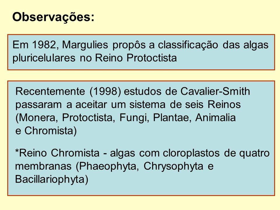 Observações: Em 1982, Margulies propôs a classificação das algas