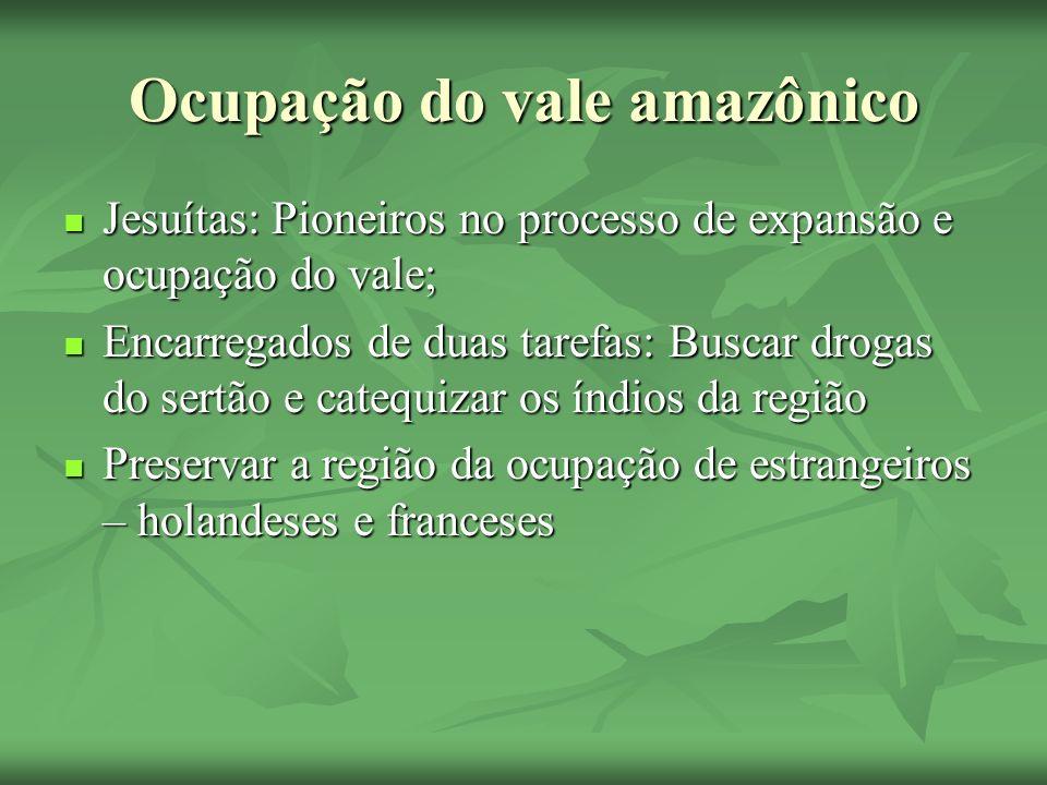 Ocupação do vale amazônico