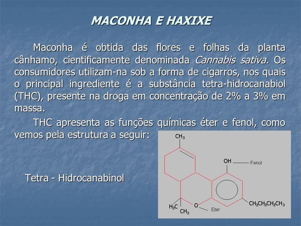 MACONHA E HAXIXE
