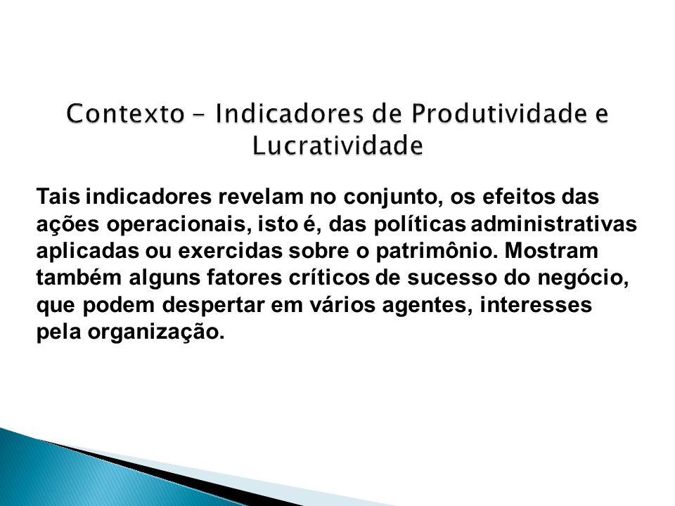 Contexto - Indicadores de Produtividade e Lucratividade