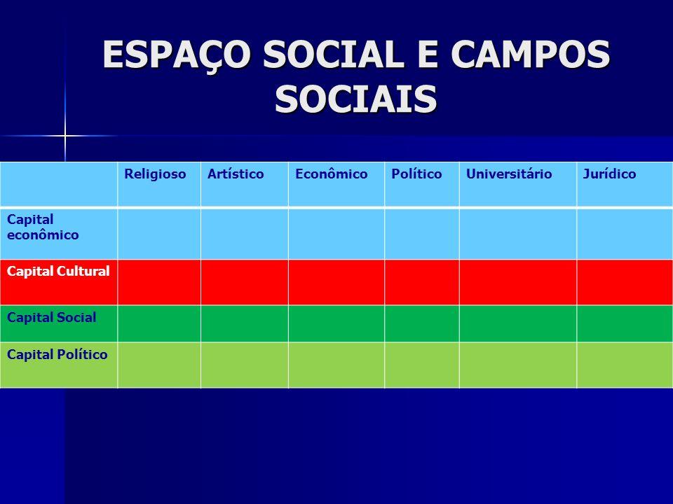 ESPAÇO SOCIAL E CAMPOS SOCIAIS