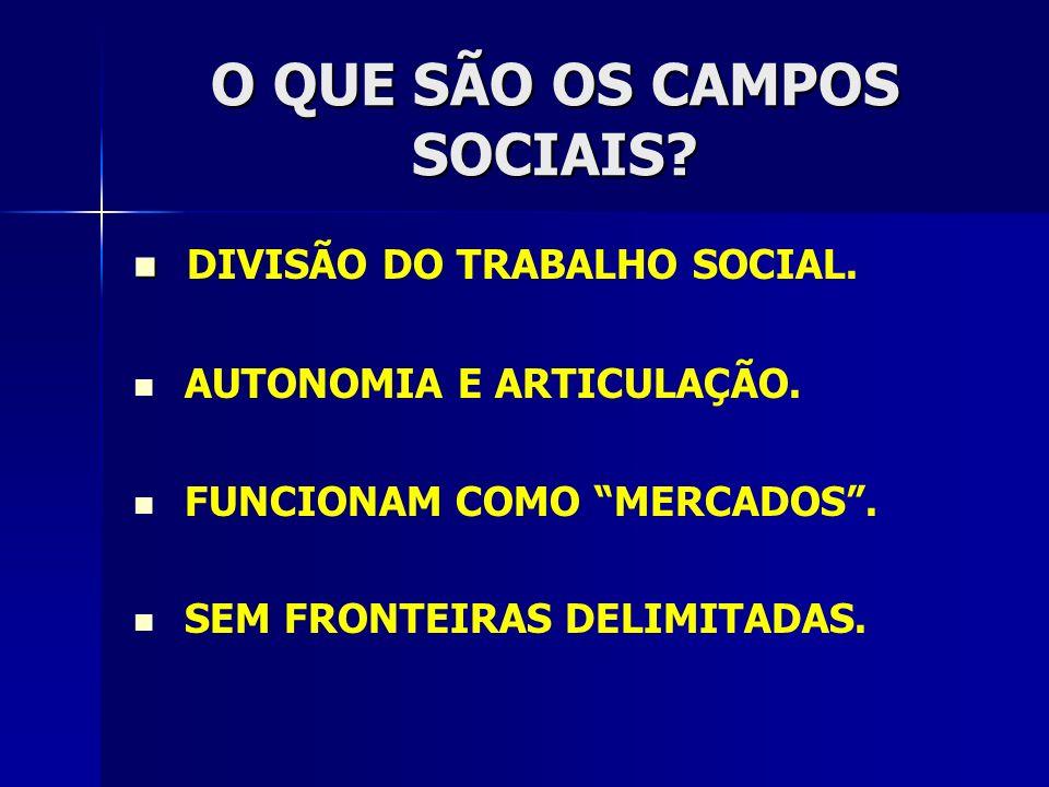O QUE SÃO OS CAMPOS SOCIAIS