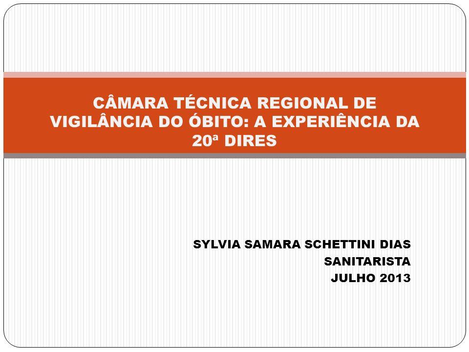 SYLVIA SAMARA SCHETTINI DIAS SANITARISTA JULHO 2013