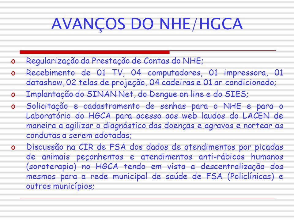 AVANÇOS DO NHE/HGCA Regularização da Prestação de Contas do NHE;