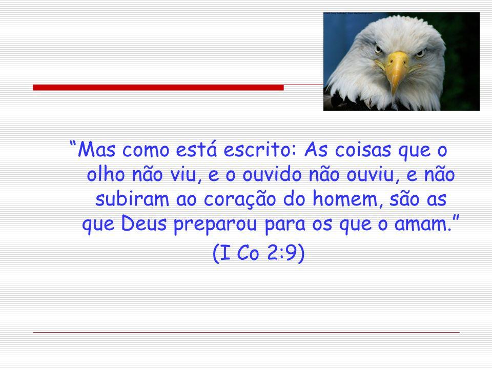 Mas como está escrito: As coisas que o olho não viu, e o ouvido não ouviu, e não subiram ao coração do homem, são as que Deus preparou para os que o amam.